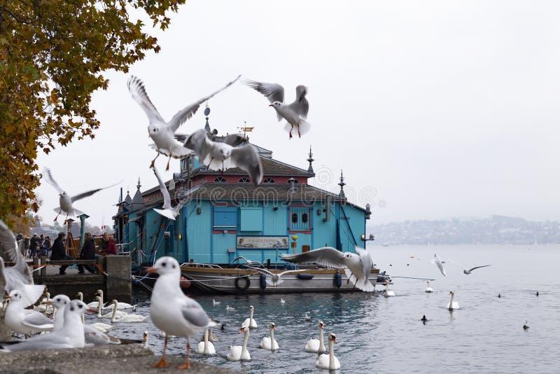 Herzbaracke kabaret-teater i Zurich Schweiz royaltyfri bild