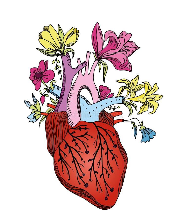 Herzblume stockfotografie