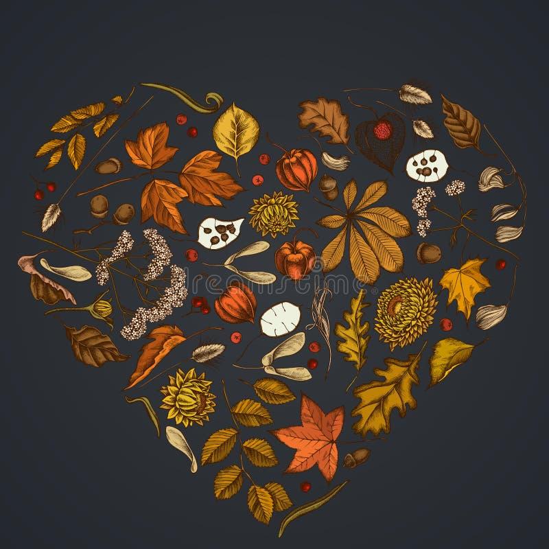 Herzdesign auf dunklem Hintergrund mit Rowan, Rowan, Ahorn, Buckeye, Farn, Ahorn, Birke, Ahornblättern, Lagurus, Federn lizenzfreie abbildung