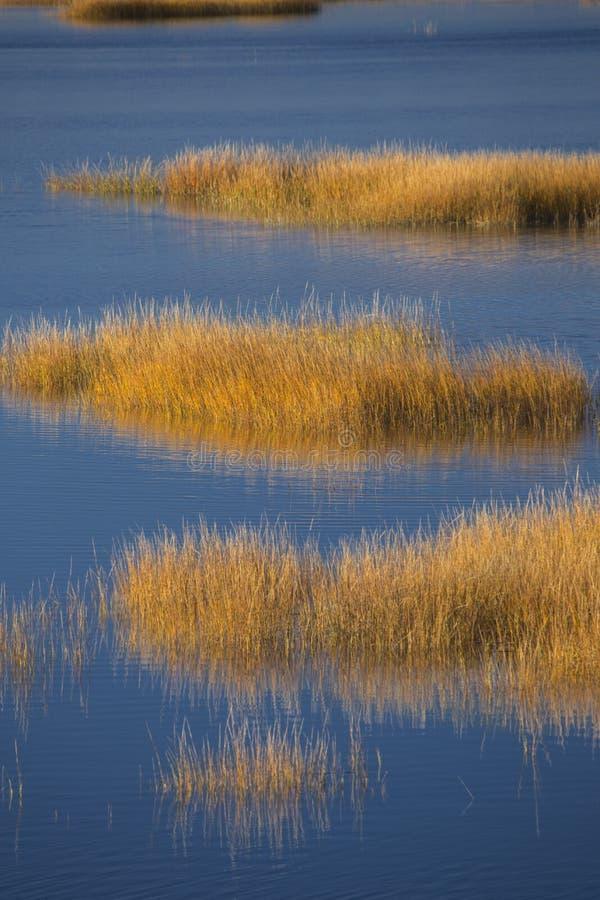 Herzenswärme des Sonnenuntergangs auf Sumpf an Milford-Punkt, Connecticut lizenzfreie stockbilder