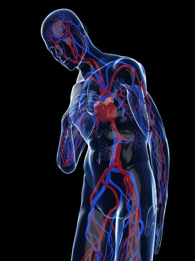 Herzinfarkt lizenzfreie abbildung