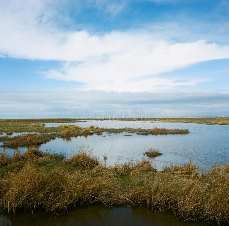 Hesketh Marsh Nature Reserve Lancashire England stock afbeeldingen