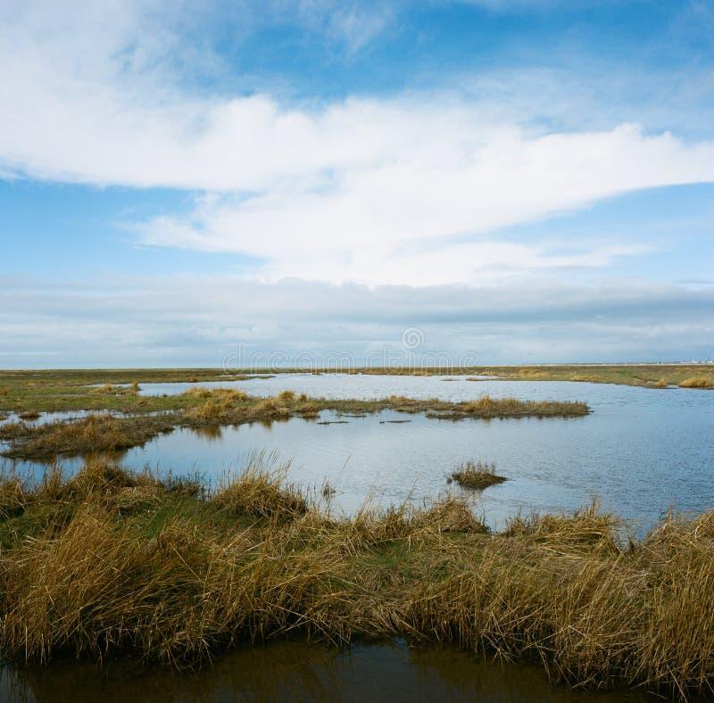 Hesketh Marsh Nature Reserve Lancashire England. Hesketh Marsh in the Ribble Estuary National Nature Reserve. Southport, Lancashire, England, UK stock images