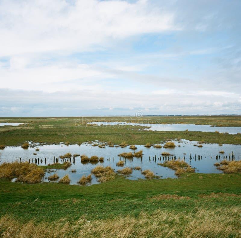 Hesketh Marsh Nature Reserve Lancashire England. Hesketh Marsh, in the Ribble Estuary National Nature Reserve. Southport, Lancashire, England, UK royalty free stock images