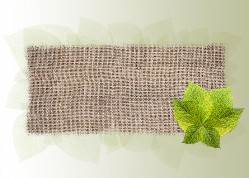 Hessian texture banner with fresh green leaf. Over modern leaf pattern background stock images
