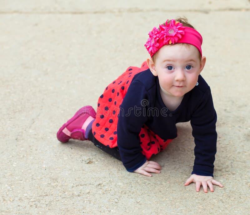 Het aanbiddelijke baby kruipen royalty-vrije stock foto's