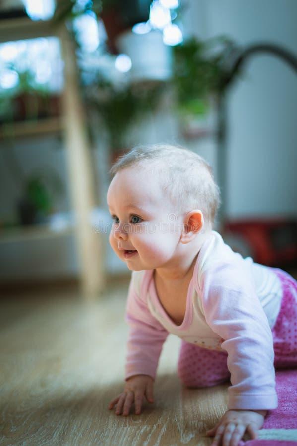 Het aanbiddelijke babymeisje kruipt op al foursvloer bij royalty-vrije stock afbeelding