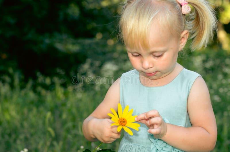 Het aanbiddelijke meisje ruikt de wilde bloemen in de weide stock foto's