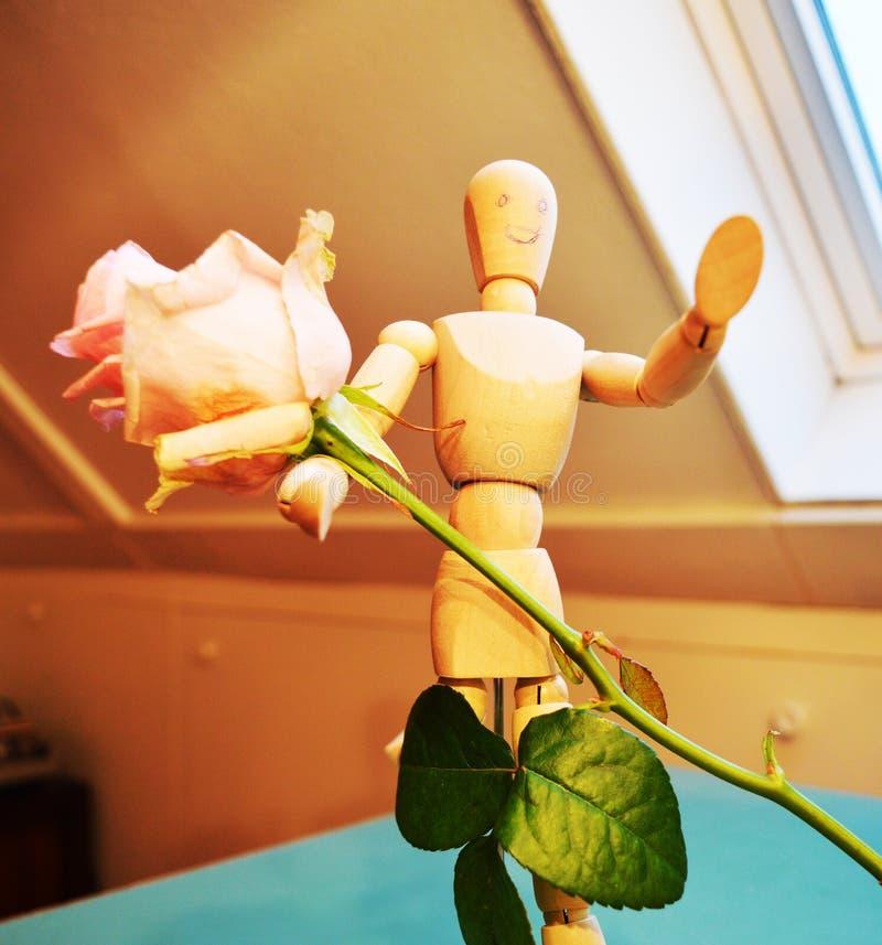 Het aanbieden van roze, symbolisch royalty-vrije stock foto's