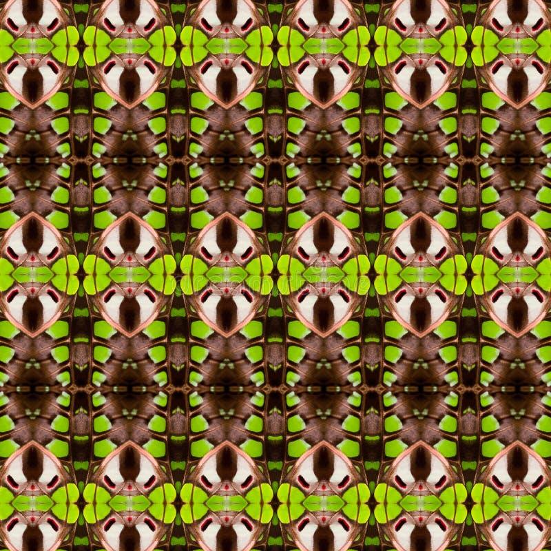 het abstracte naadloze patroon van de vlindervleugel vector illustratie