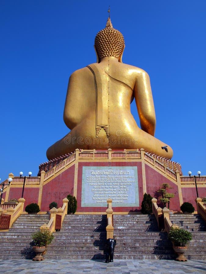 Het achter Grote beeld van Boedha stock afbeeldingen