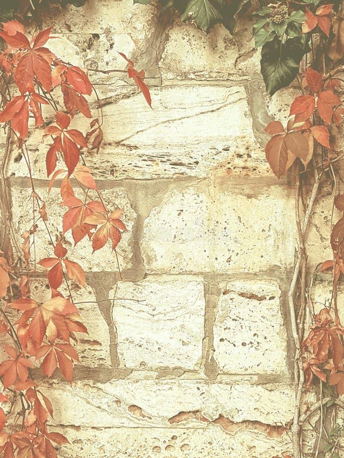 Het achtergrond-uitstekende gestileerde beeld van het de herfstconcept royalty-vrije stock foto