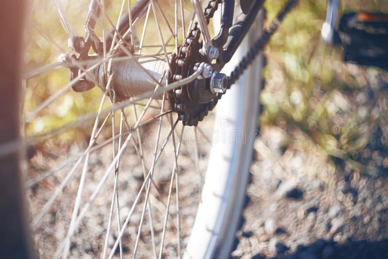 Het achterwiel van een Fiets met één snelheid stock fotografie