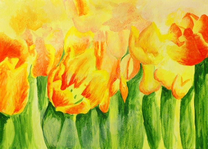 Het schilderen van mooie Rode gele tulpen stock illustratie