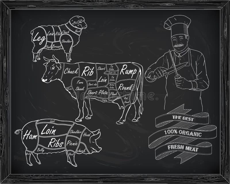 Het afslachten rundvleesdiagram, varkensvlees, lam en kok vector illustratie