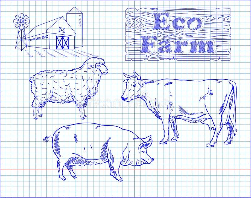 Het afslachten rundvleesdiagram, varkensvlees, lam en landbouwbedrijf vector illustratie