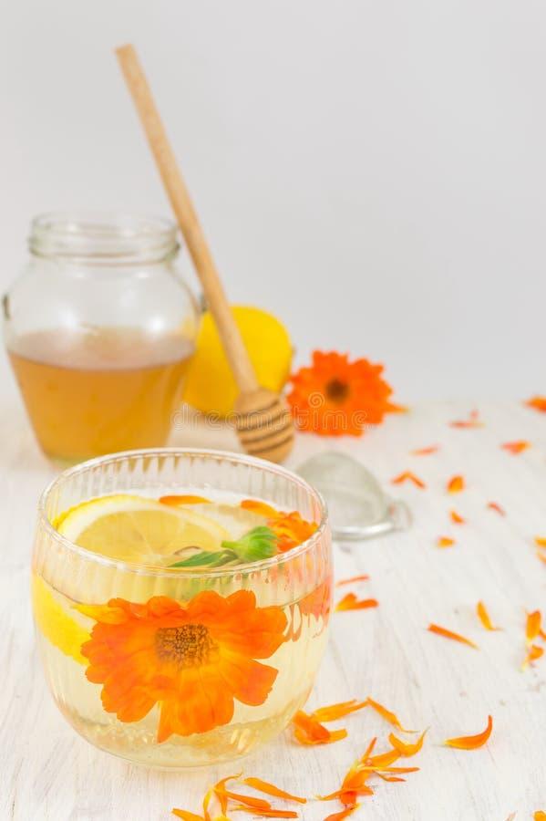 Het aftreksel van de goudsbloembloem met citroenplakken royalty-vrije stock afbeeldingen