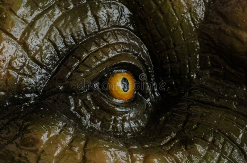 Het agressieve oog van T Rex stock afbeeldingen