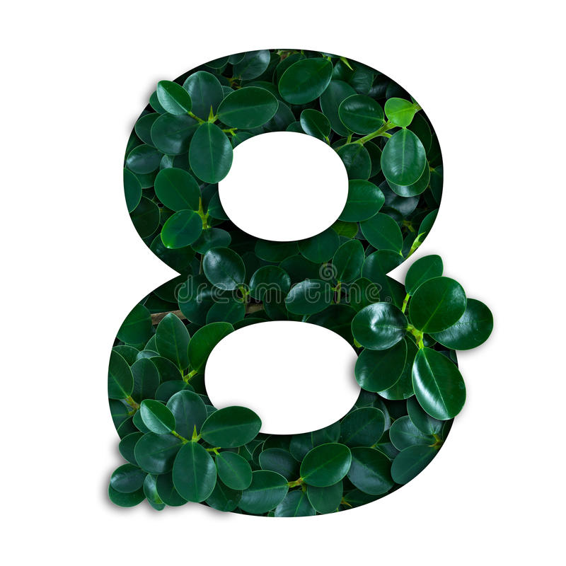 Het alfabet van het aardconcept van groene bladeren in aantal acht stock afbeelding