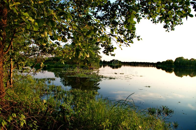 In het alluviale gebied van de Klyazma-rivier stock foto