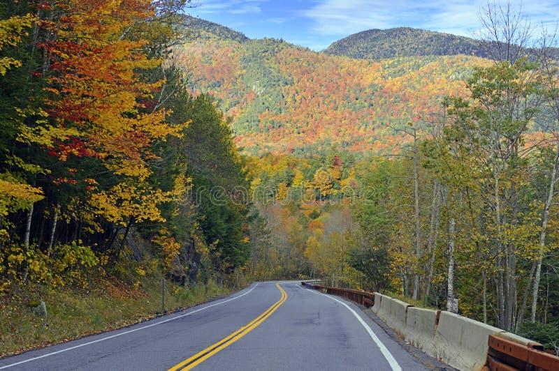 Het alpiene plaatsen in de Adirondack-Bergen, de Staat van New York royalty-vrije stock foto's