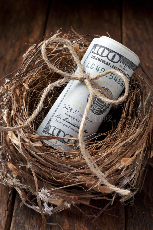 Het Amerikaanse Geld van het Nestei stock foto's