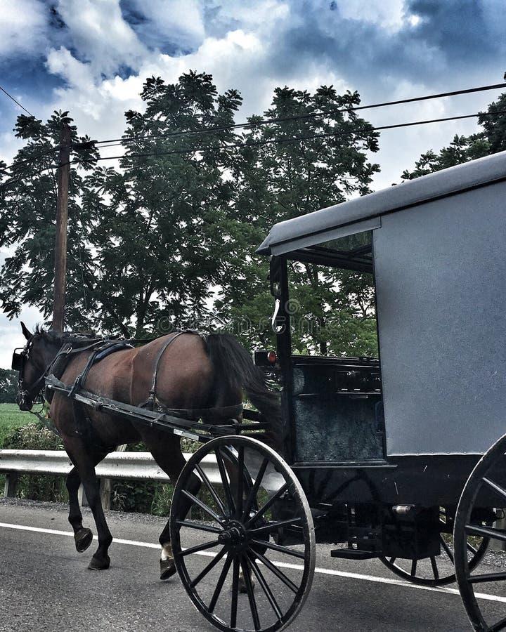 Het Amishleven stock afbeeldingen