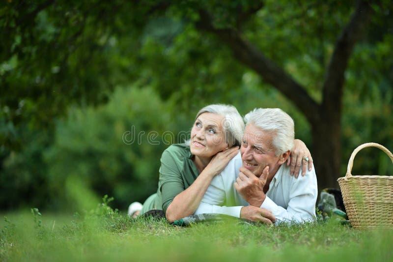 Het amuseren van oud paar in de zomerpark stock foto