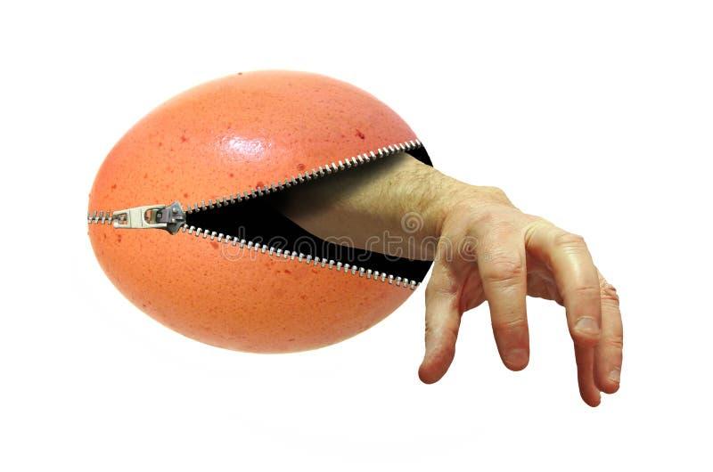 Het angstaanjagende wapen handemerging van binnenuit een opengeritst ei stock afbeelding