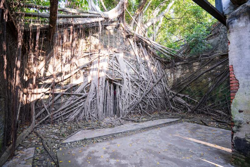 Het Anping-Boomhuis is een vroeger pakhuis in Anping-District, royalty-vrije stock fotografie