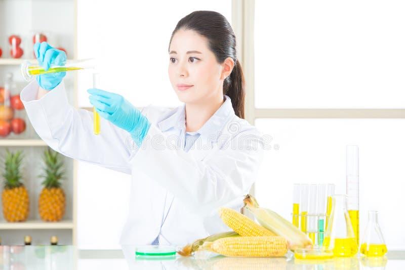 Het antwoord is in dit genetische modificatiegraan stock fotografie