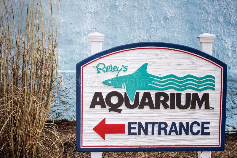 Het Aquarium van Ripley stock afbeeldingen