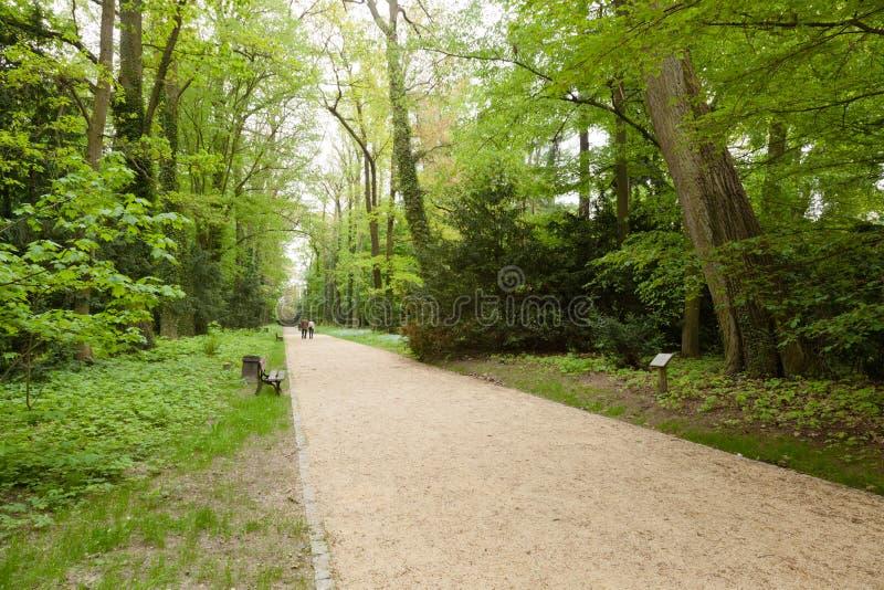 Het Arboretum van Kornik stock foto