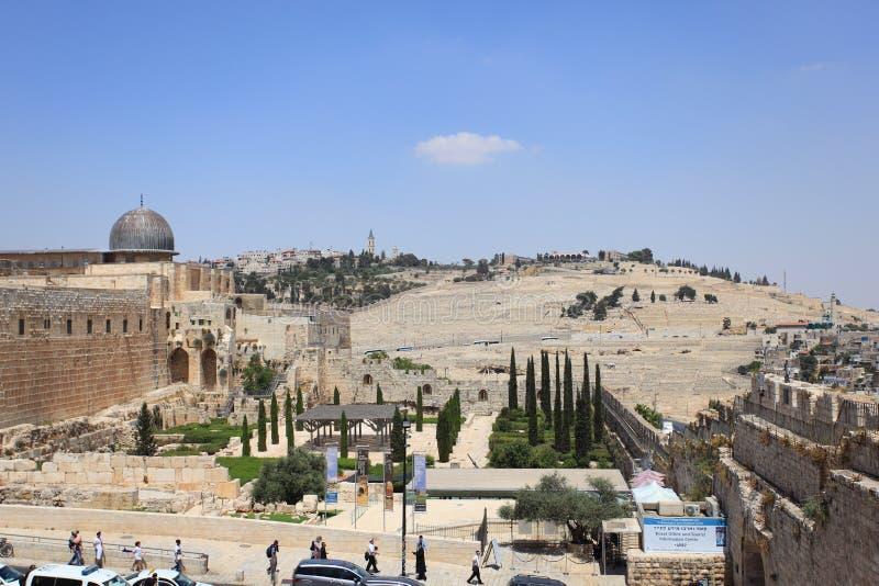 Het archeologische Park, al-Aqsa, zet Olijven op stock fotografie