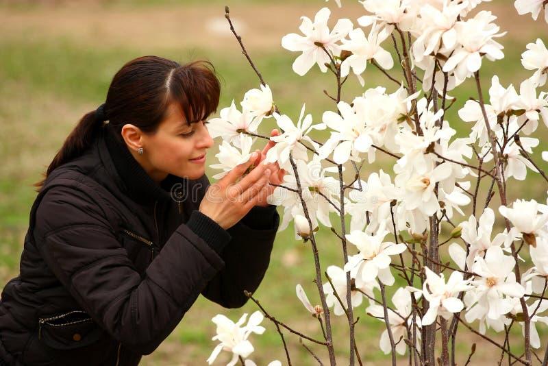 Het aroma van de lente stock foto