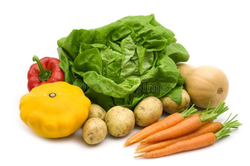 Het assortiment van groenten stock foto's