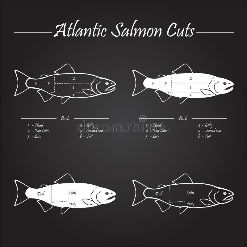 Het Atlantische diagram van zalmbesnoeiingen royalty-vrije illustratie