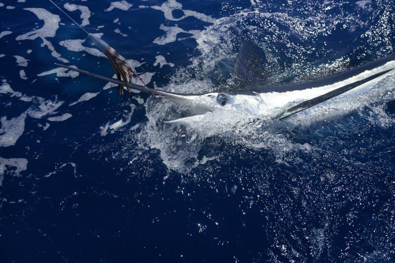 Het Atlantische witte marlijn grote spel sportfishing stock foto