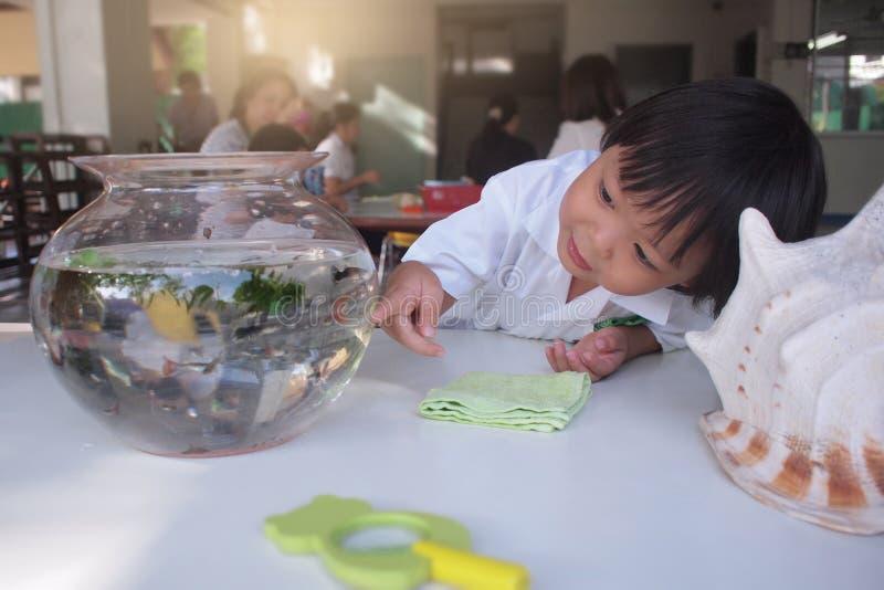 Het Aziatische jonge geitje geniet van lettend fishs op het zwemmen in een rond aquarium van de vissenkom stock afbeeldingen