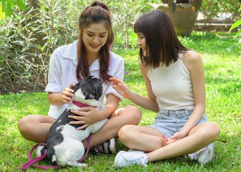 het Aziatische jonge mooie vrouw twee spelen met Frans buldogpuppy in park openlucht royalty-vrije stock afbeelding
