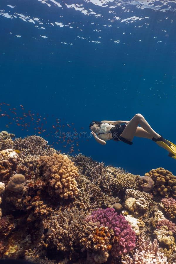 Het Aziatische vrouw meer freedivier stellen in Blauw Gat royalty-vrije stock foto