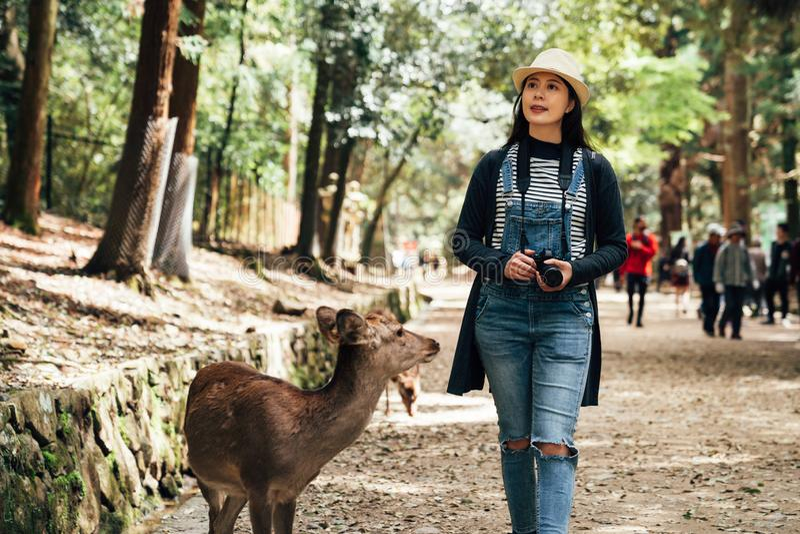Het Aziatische vrouwelijke jonge meisje heeft pret in het park van Nara royalty-vrije stock foto's