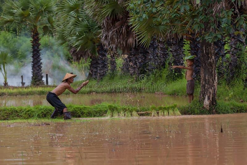 Het Aziatische water van de mensenplons aan zijn zoon bij platteland stock afbeeldingen