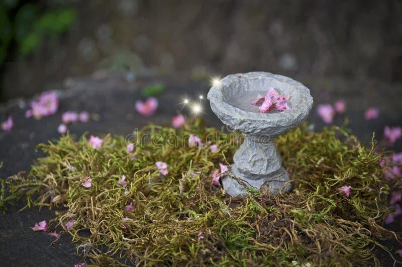 Het bad van de feevogel met roze bloemen en het gloeien lichten stock afbeelding