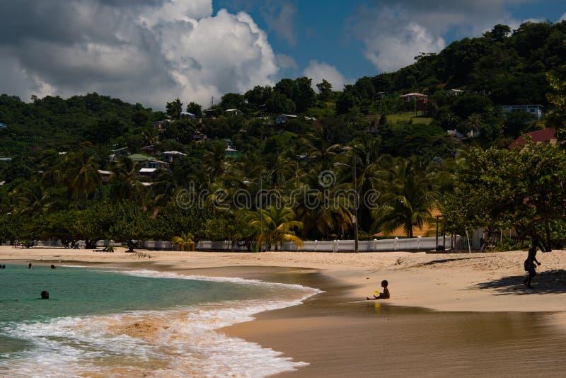 Het baden op Grote Anse royalty-vrije stock fotografie