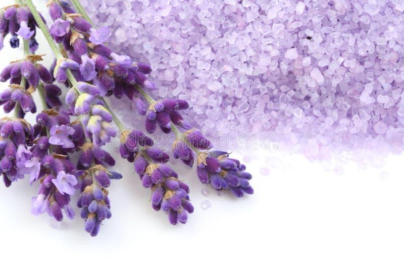 Het badzout van de lavendel stock afbeeldingen