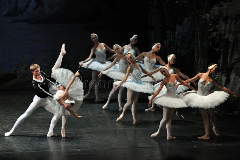 Het Ballet van het Meer van de zwaan stock afbeelding