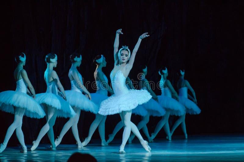 Het ballet van het Meer van de zwaan royalty-vrije stock afbeeldingen