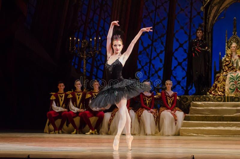 Het ballet van het Meer van de zwaan royalty-vrije stock foto's