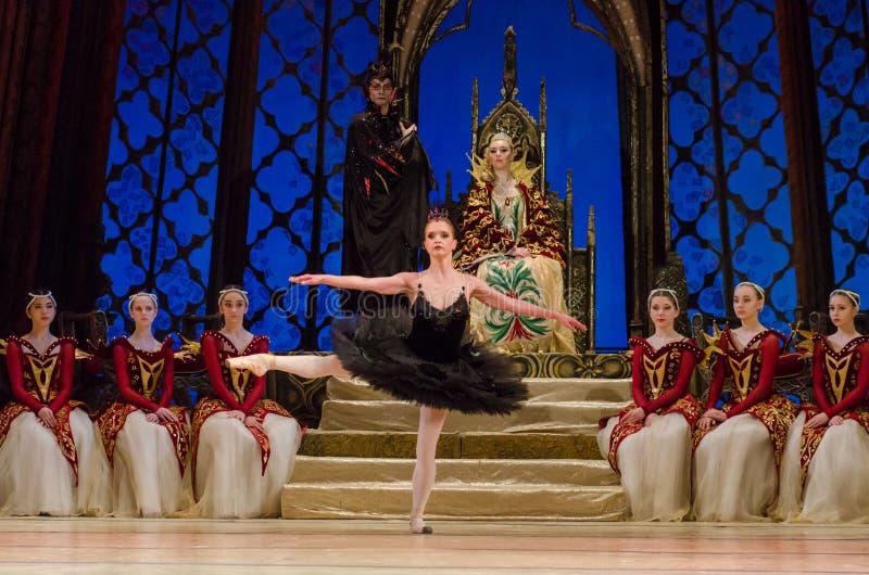 Het ballet van het Meer van de zwaan royalty-vrije stock afbeelding